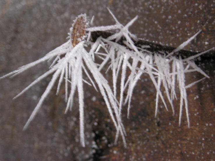 Zima na Veľkom Choči II.