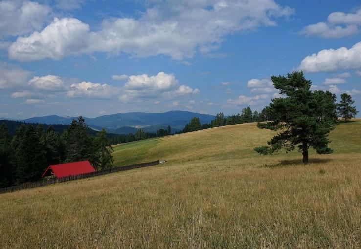 Hrebeň nad obcou Wojkowa