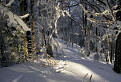 Zima v Súľovských vrchoch
