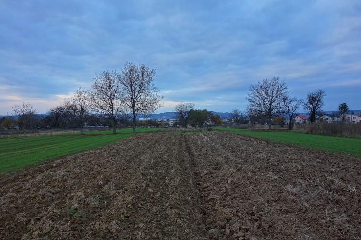 Piľní poľní aj domajší hospodár