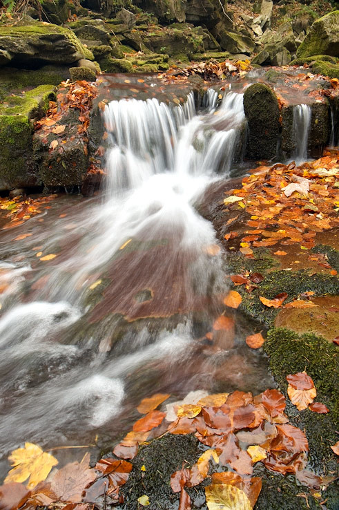 Jesenná Satina