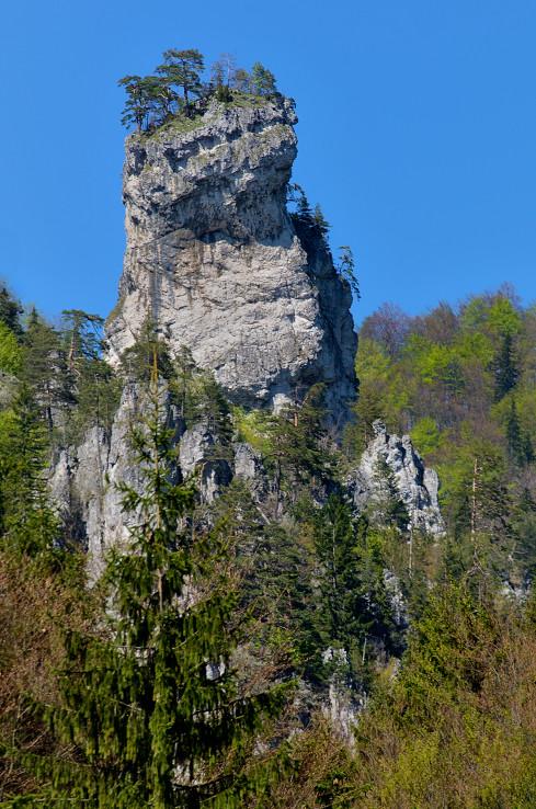 Orlia veža