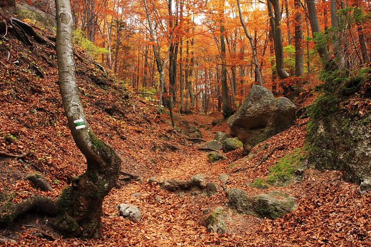 Jeseň v Súľovských vrchoch.