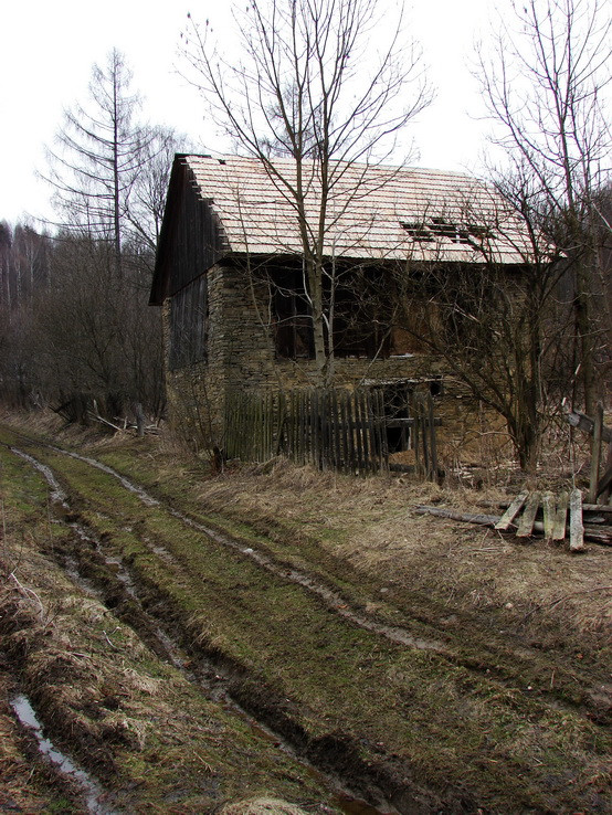 Hlavná cesta cez Putnov