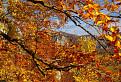 Vzpomínka na podzim