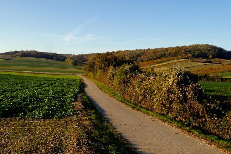 Vpravo jeseň, vľavo zeleň