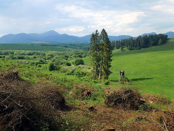 V zelenom údolí