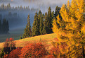 ABSOLUT jeseň