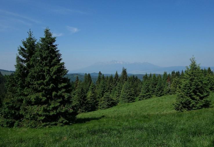 Medzi Prednými horami a Javorinkou
