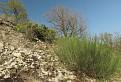 Návšteva Prírodnej rezervácie Solčiansky háj