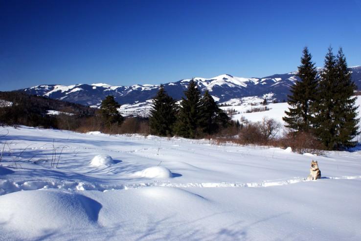 Nízke Tatry,  v pozadí Ďumbier