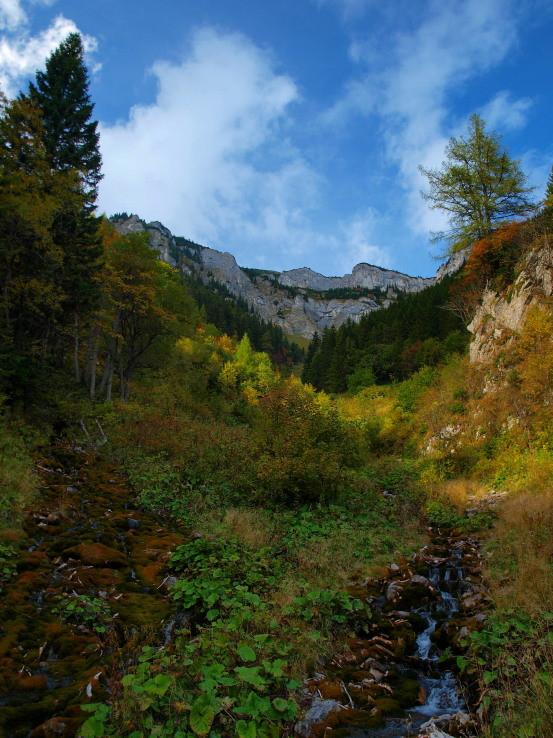 Pravá divočina v doline Siedmych prameňov.