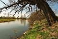 Jar pri rieke Turiec / 1.0000