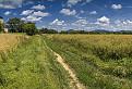 Krajina v okolí Pominovca
