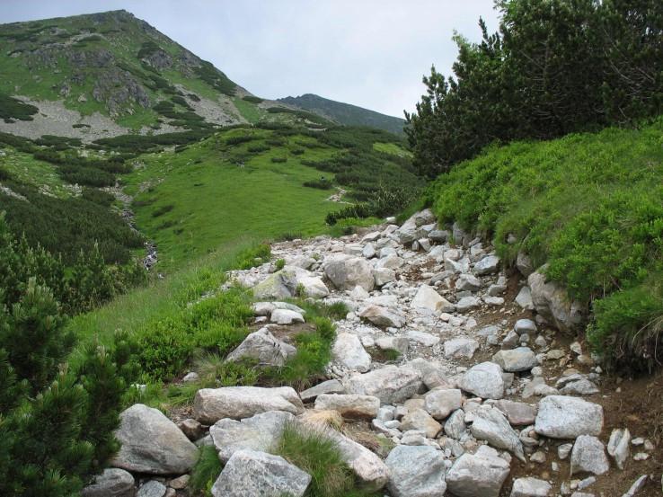 Chodnik Ziarskou dolinou
