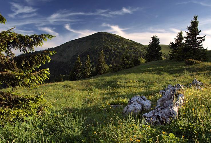 Suchý vrch veľkofatranský
