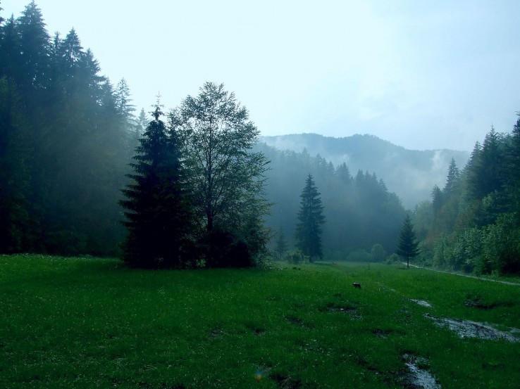 Podhradská dolina po daždi