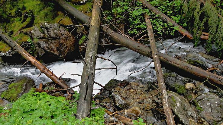 Pod Roháčskym vodopádom II.