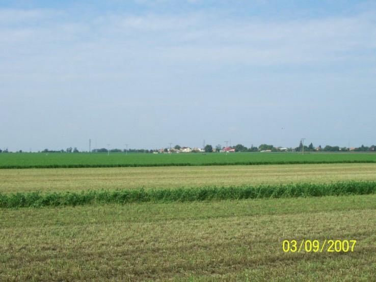 Zelena rovinka pri Novych Zamkoch