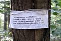 Aj takí sa potulujú lesom ... )))