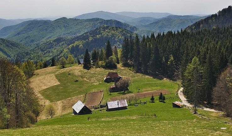 Jarný Kučalach