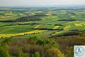 žlto-zelené pohľady