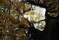 Jesenný úsvit pri starom mohykánovi
