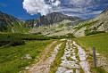 Cesta do hor