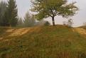 Značkársky strom