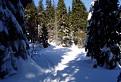Zima pod Suchým 2