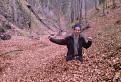 jesen plna opadanych listov