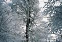 Snehová krása z inverzie