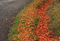 Jesenný