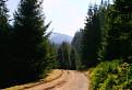Cestou Jánskou dolinou