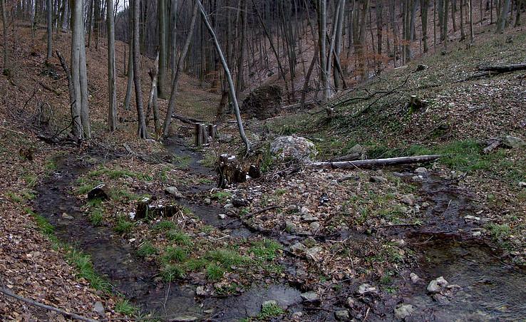 Sviniansky potok