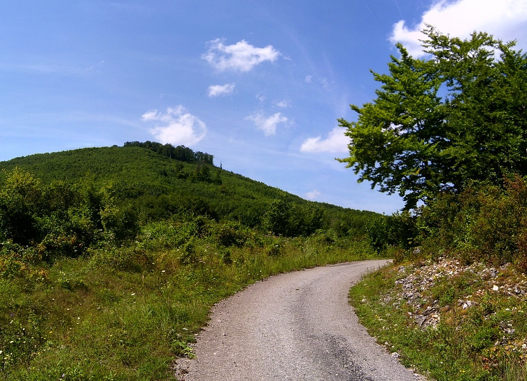 Cesta pod Klenovou