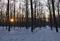 Kráčam lesnou cestičkou