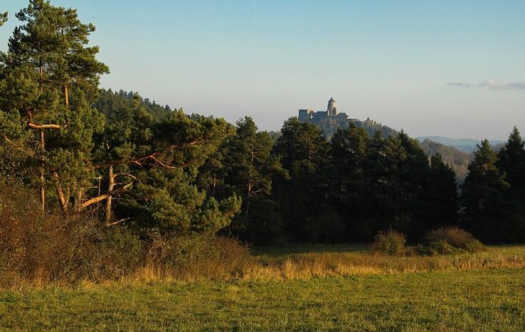 hrad v objatí borovíc