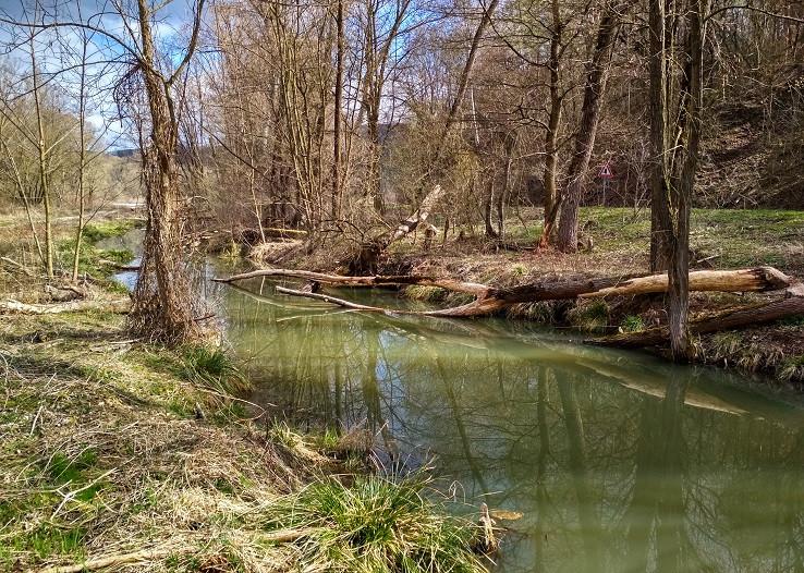 mokraď za Hradišťom