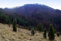 Vysoký vrch 766 m.n.m.
