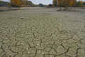 Dry Land...