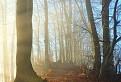 Hranica svetla a hmly