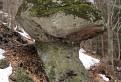 Prochotský skalný hríb