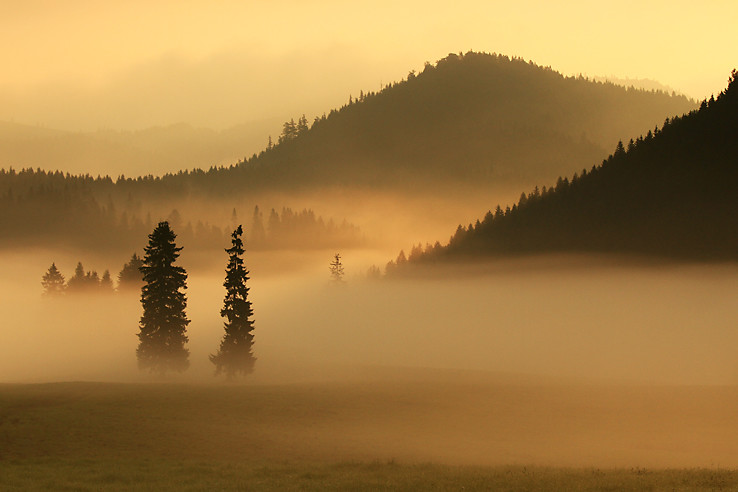 Ranné hmly v sedle Besník