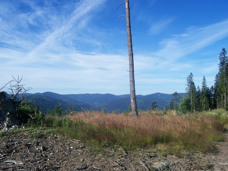 Horná lúka za Holým vrchom