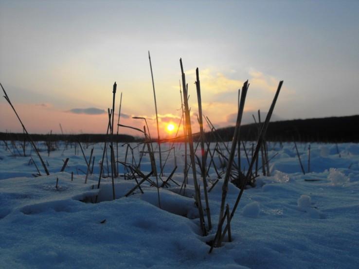 Západ slnka nad Čičkamy 1.