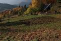 Pravá podzimní