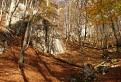 Prírodná rezervácia Rokoš