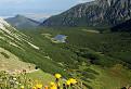 Dolina Bielych plies