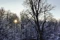 Čakanie na zimu